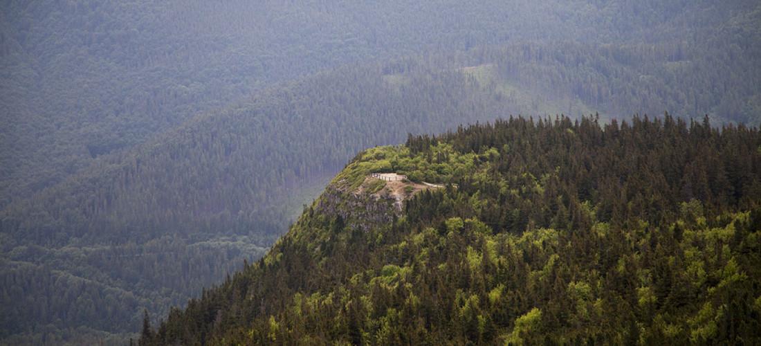 Widok z Kępy na Sokolicę