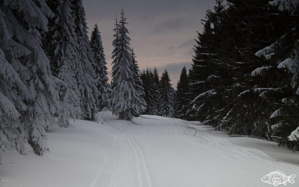 Zimowe Gorce